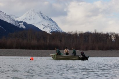 Gillnetting on the Taku River